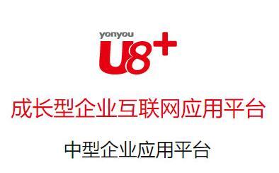 用友U8+
